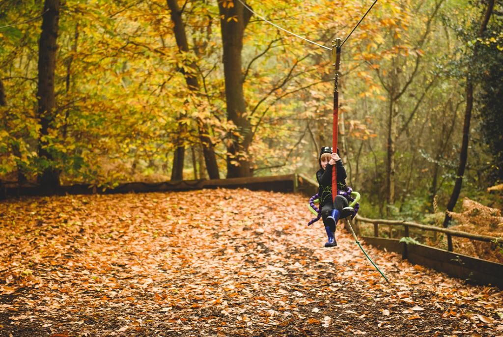 Boggle-brilliant Autumnal scenes